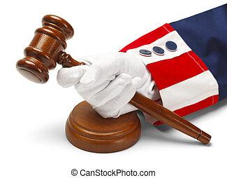 미국 영어, 법