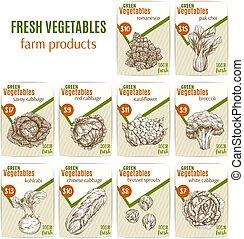 밑그림, 메뉴, 가격, 야채, 벡터, 채소, 또는
