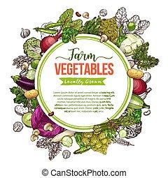 밑그림, 버섯, 포스터, 구조, 콩, 야채