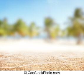바닷가, 모래의