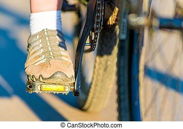 발, 소녀, 에서, 스니커스, 자전거에서, 페달