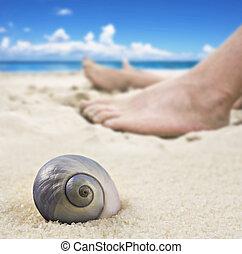 발, 여자, 바닷가, 있는 것, 남자