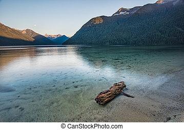 밝다, 청록색의, 통나무, 호수