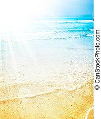 밝은, 여름, 햇빛, 통하고 있는, a, 열대 바닷가