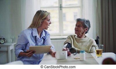 방문자, 측정하는 것, 건강, home., 연장자, 피, 여자, 압력