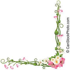 배경, 와, 아름다운, 꽃