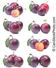 버찌, 자두, 과일