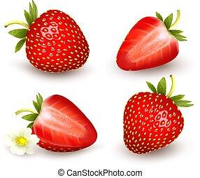 벡터, 신선한, 세트, strawberry., illustration.