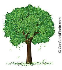 벡터, 실루엣, 의, 여름, 계절, 나무