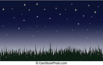 별이 많은, 밤, 벡터, 삽화
