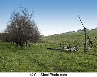 봄, 시골
