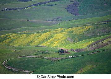 봄, 시골, tuscany