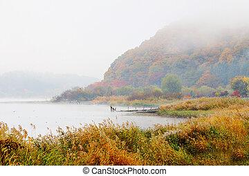 봄 안개가 덮인, 호수, 에서, 가을