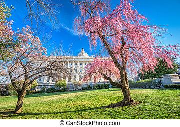 봄, 워싱톤 피해 통제