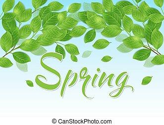 봄, 잎, 녹색의 배경