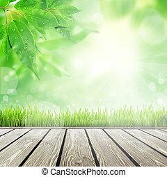 봄, 자연, 배경, 와, 풀