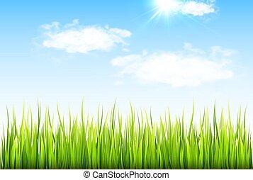 봄, 풀, 녹색의 배경