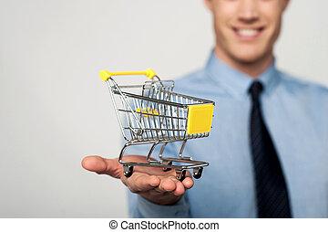부언하다, 에, 손수레, e-commerce, concept.