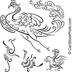 부족 새, 삽화