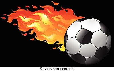 불, 축구 공