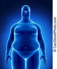 비만, 개념, 에서, 엑스선으로 검사하다