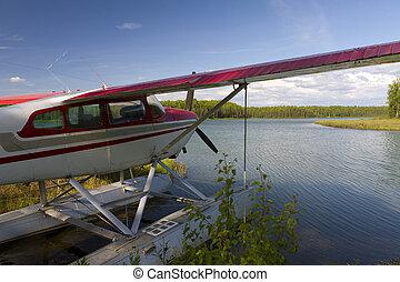 비행기, 통하고 있는, 호수