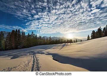 빛, 눈, 동안, 일몰, austrian, 부드러운 물건, 조경술을 써서 녹화하다
