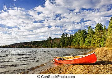 빨강, 카누, 통하고 있는, 호수 기슭