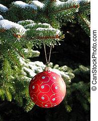 빨강, 크리스마스 공, 통하고 있는, 전나무 나무