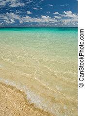 사막화되는, 해안선