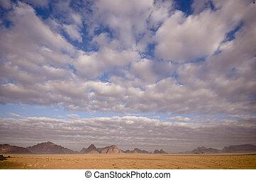 사막 장소