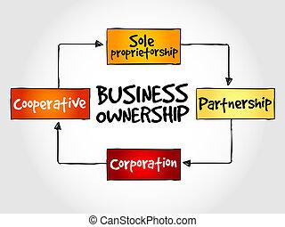 사업, 소유권