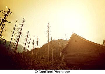 산, 떼어내다, 자연, 조경.