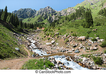 산, 본부, 자연, 아시아, kazakhstan, 조경술을 써서 녹화하다