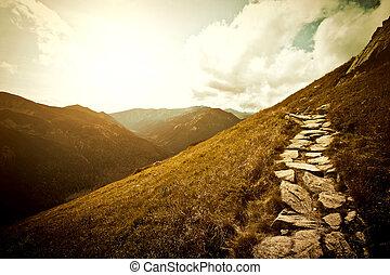 산, 자연, 조경.