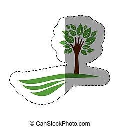 산, 형태, 잎, 나무, 줄기, 녹색, 손