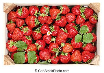상자, 멍청한, 딸기, 장과, 과일