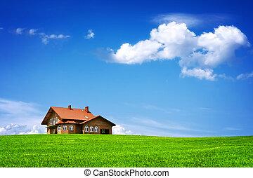 새로운 집, 통하고 있는, 푸른 하늘