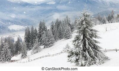 새로운, 크리스마스, 배경, 겨울, 년
