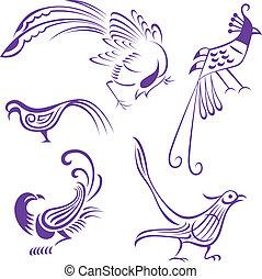 새, 삽화