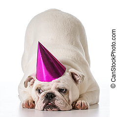 생일, 개