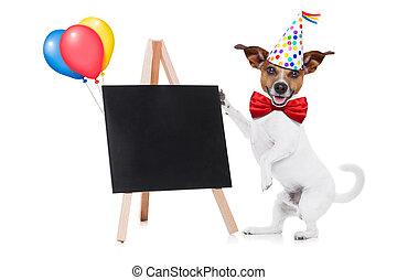 생일, 개, 행복하다