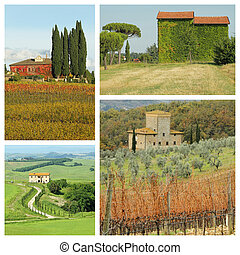 생존, 에서, 아름다운, tuscan, 시골, -, 그룹, 의, 심상