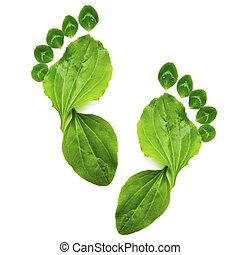 생태학, 예술, 봄, 떼어내다, 발, 녹색, 인쇄, 상징