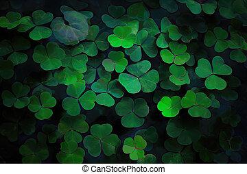 생태학, leaves., 녹색, 배경., 떼어내다, 패턴, 잎