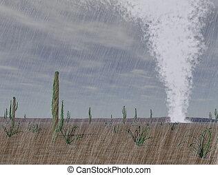 선풍, 사막