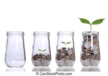성장하는, 식물, 단계