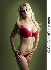 성적 매력이 있는, 브루넷의 사람, 소녀, 에서, 빨강, 란제리