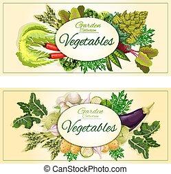 세트, 건강한, 채소, 야채, 신선한, 기치