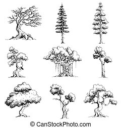 세트, 나무